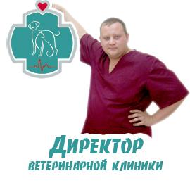 Директор ветеринарной клиники БиоРитм Ветеринарная